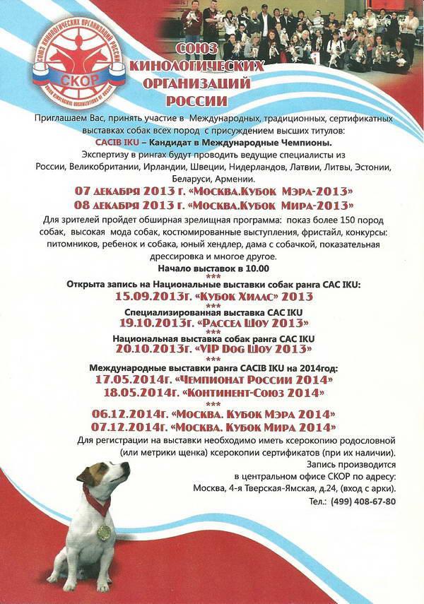 выставка сиба ину в москве